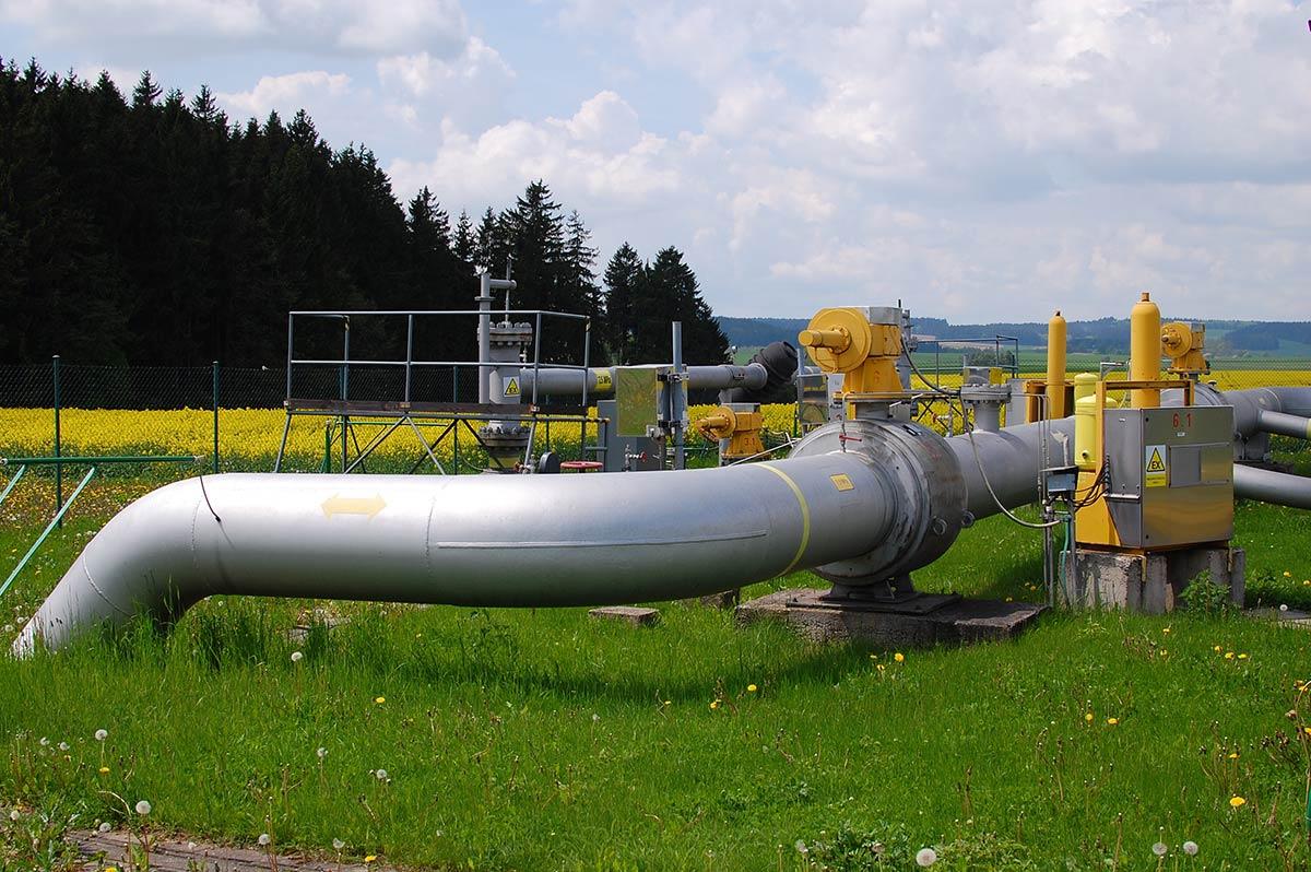 Natural gas process Raman spectrometer